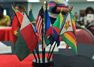 NAASP: come funziona il ponte tra Asia e Africa