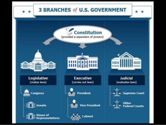 branches-of-gov-ppt-4-638
