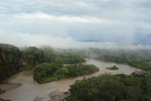 Soia, il filo sottile tra la Cina e l'ecosistema sudamericano