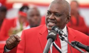 Elezioni in Botswana: l'analisi dei risultati