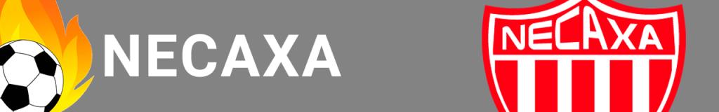 Banner Necaxa