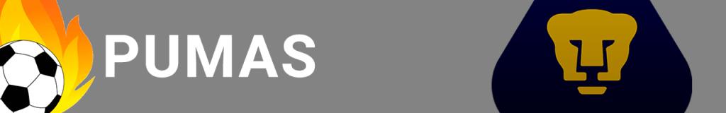 Banner Pumas