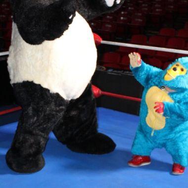 18/03/2020. El famoso luchador Kemonito habló de manera seria sobre el coronavirus que afecta al mundo y su retiro
