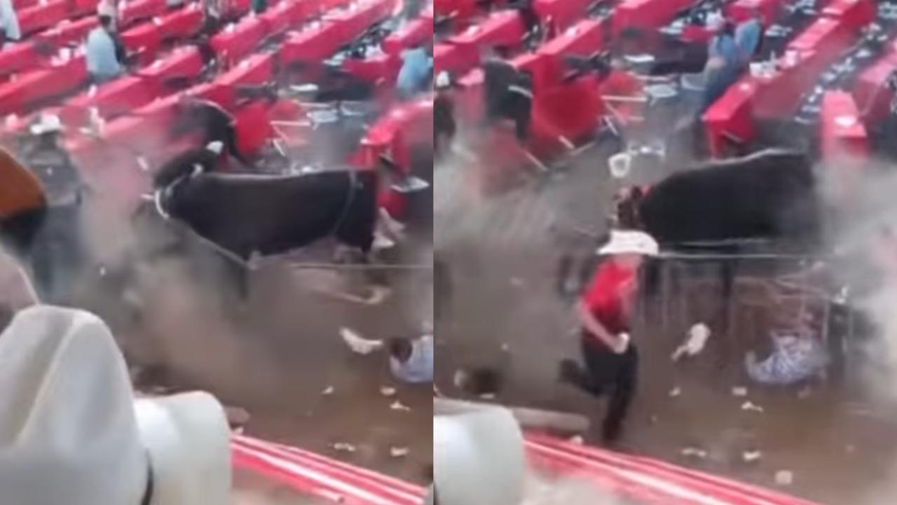 Toro derriba barda y embiste a 10 personas durante jaripeo clandestino en Michoacán