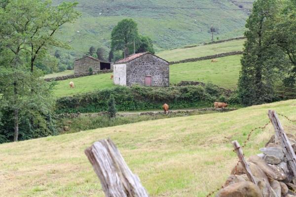 Viaje de 7 días por Cantabria | Ruta, presupuesto y más cosas.