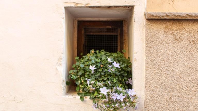 Benassal y Culla | Qué ver en un día en estos bonitos pueblos de Castelló.