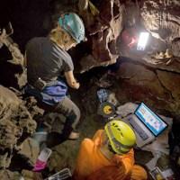 Homo Naledi y el Arbol Genealógico de Nuestra Especie