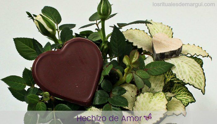 hechizo amor vino chocolate