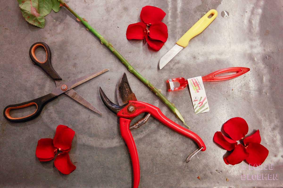 Van links naar rechts: de schaar, de snoeischaar, de bloemensnijder en een mesje. Allemaal goed denk je.. maar schijn bedriegt.