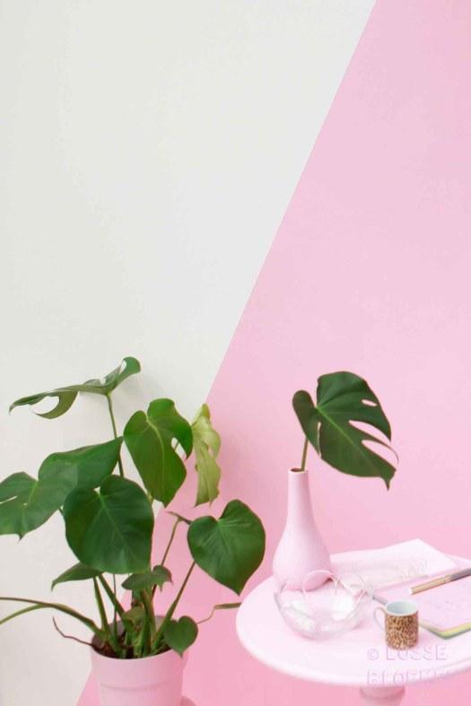 Roze losse bloemen showup Monstera. hoekje door brainydays
