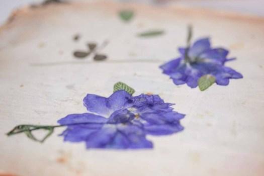 bloemendrogen lossebloemen.nl