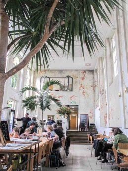 de hortus Amsterdam botanische tuin hotspot