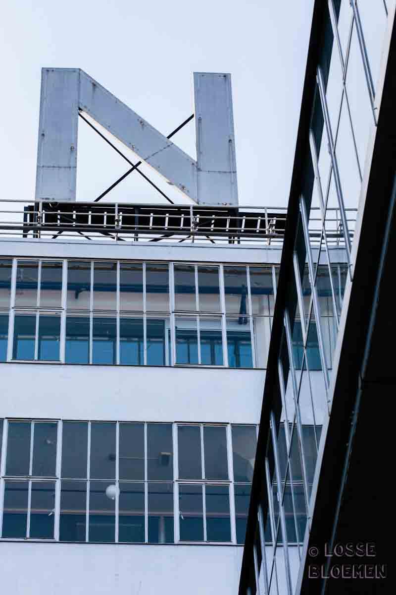 swanmarket van nelle fabriek rotterdam - lossebloemen.nl
