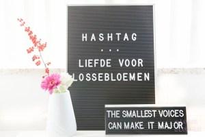 Bloemen en planten quotes voor op de llightbox of letterbord - lossebloemen.nl