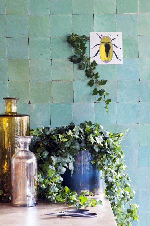 hedera-beeld-mooiwatplantendoen-welke-planten-goed-voor-slaapkamer-