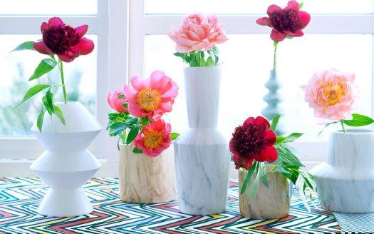 pioen-pioenrozen-beeld-mooiwatbloemen-doen,-bloemen-die-staan-voor-geluk-betekenis-pioenroos