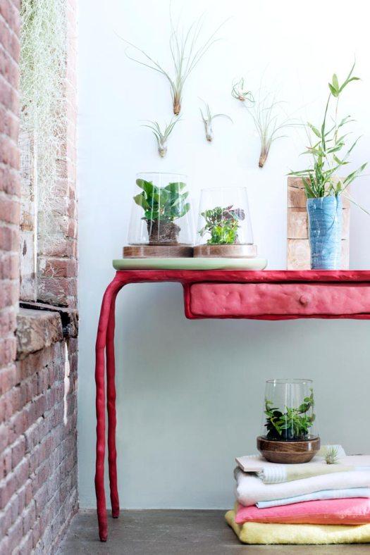 planten-voor-slaapkamer-airplants-luchtplantjes-slaapkamer-plant-beeld--mooiwatplantendoen-tafel-losse--bloemen-bloemenblog