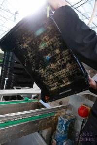 Kisten schoonmaken watertulpen Martin Braas lossebloemen blog tulpen kweken tulpen broeien watertulpen binnenkijker in de kas