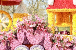 Bloemencorso een mooi bloemenfeest met het wauw-effect