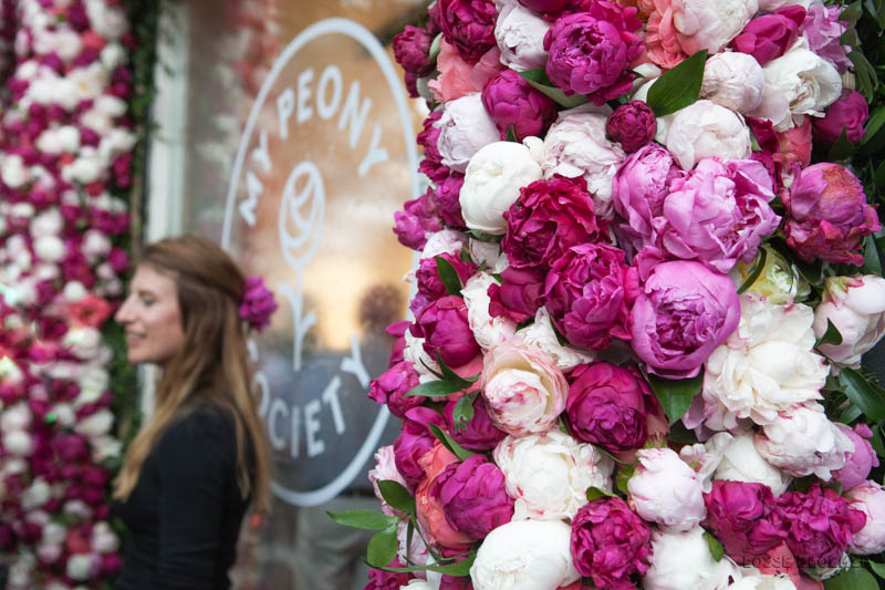 My peony society pioenen pop-up amsterdam 30-05-2018 lossebloemen.nl