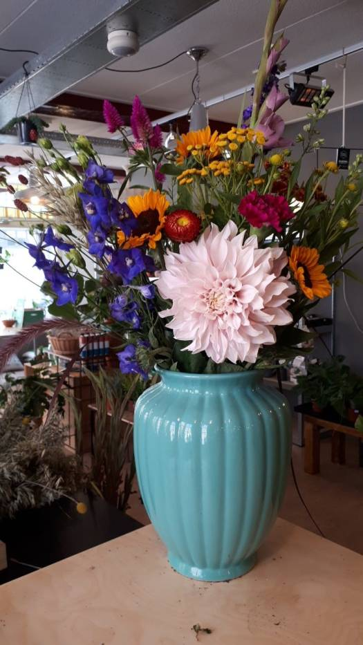 Start with dirt bloemen