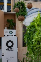 Ogreen planten Showup 2018 Najaar - foto's - lossebloemen blog