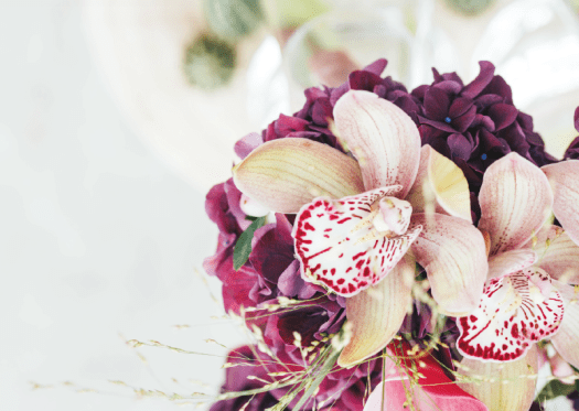 Cymbidium inspiratieweken bloem v/d maand November snijorchidee