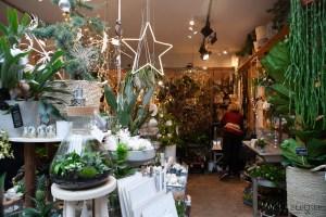 Groenevingers delft plantenwinkel - bloemen blog