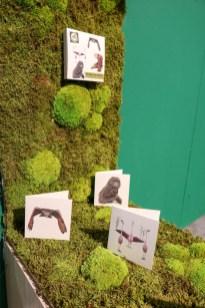 Studio Puur Natuur | Showup najaar 2020-4