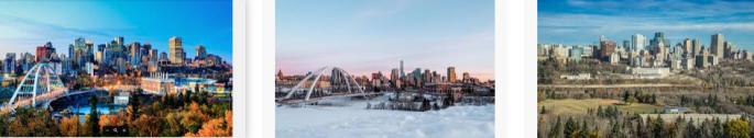 Lost found Edmonton city