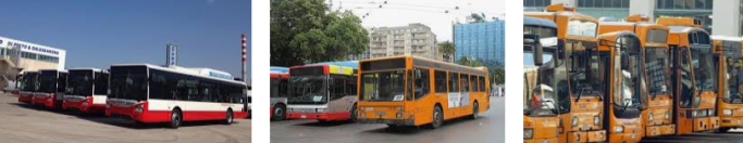 Lost found bus Bari
