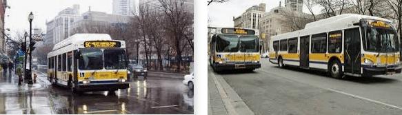Lost found bus Hamilton