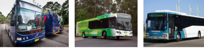 Lost found bus Wollongong