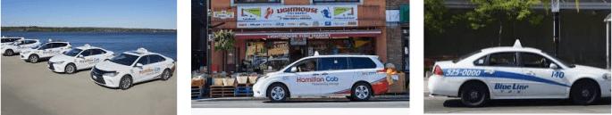 Lost found taxi Hamilton