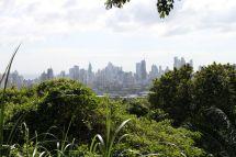 Blick auf Panama City vom Mirador im Parque Natural Metropolitano