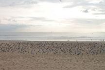 Der Atlantik-Strand von Porto an der Av. Norton de Matos