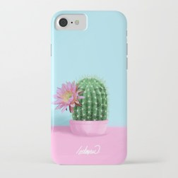 cactus-flower-serie-1-cases