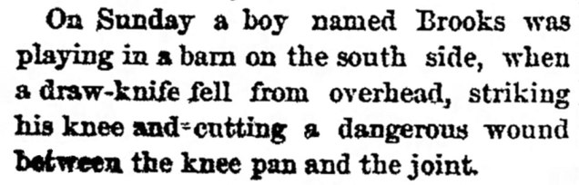 Oshkosh_Daily_Northwestern_Tue__Aug_27__1878_