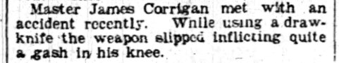 The_Ottawa_Journal_Thu__Aug_1__1895_