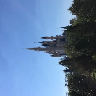 Disney-WDW-Castle-2018