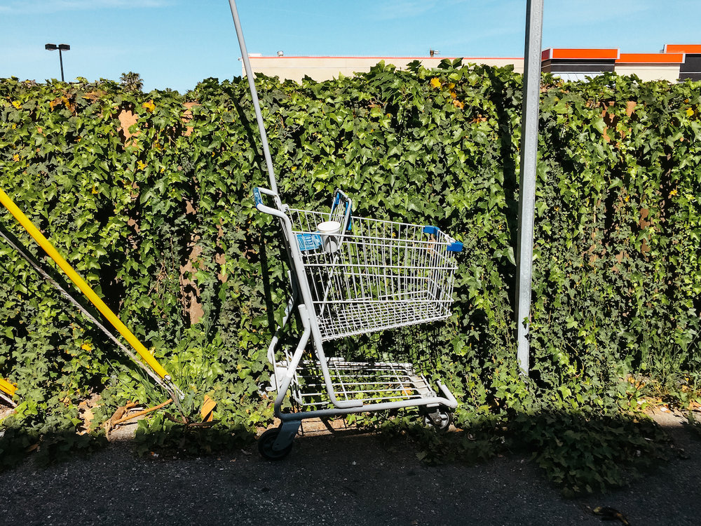 Lost in Los Angeles Photo Series. Photo of a shopping cart against a wall covered in Ivy.