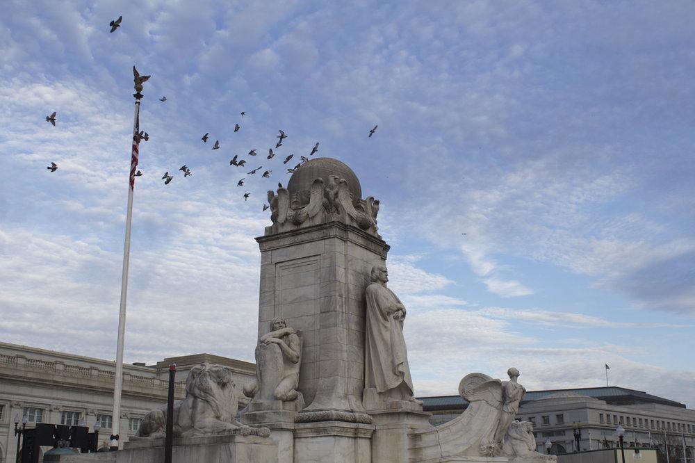Quick Shot - Quick snap of birds flocking around the fountain.