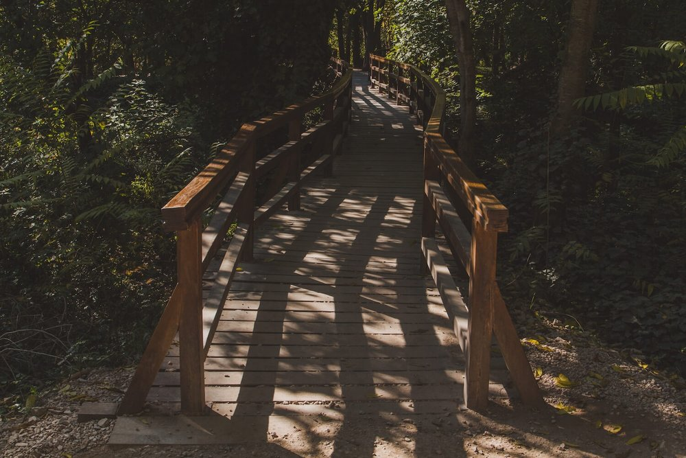 Wooden Bridge Inside Krka National Park Croatia. Photo taken with Canon 650D Rebel T4i, edited in Lightroom. Get the free Krka lightroom preset with cool highlights, warm shadows, and a gentle fade.