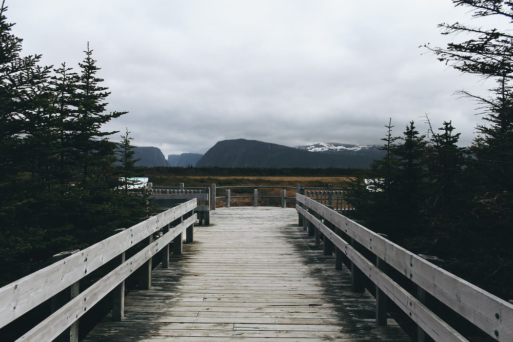 Photo of Gros Morne Nation Park in northeastern Canada. Here is the entrance, a wood planked pathway leading into the grasslands and looking out over Gros Morne Mountain.