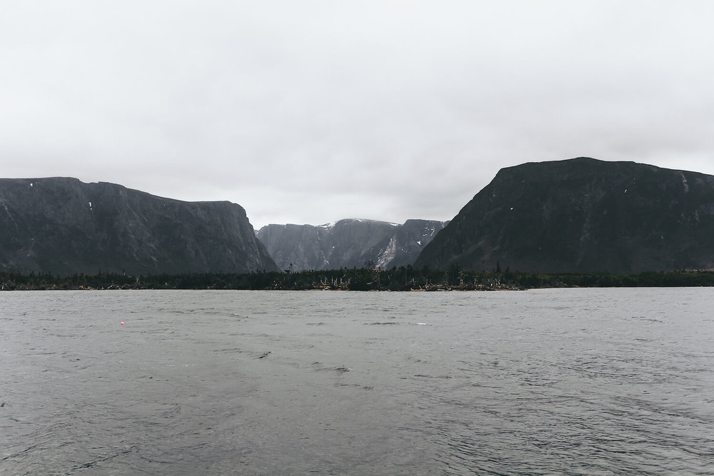 Photo of Gros Morne Nation Park in northeastern Canada. Gros Morne Fjord covered in muddy clouds and mist beyond a dark Black Sea.