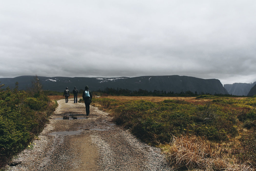 Photo of Gros Morne Nation Park in northeastern Canada. A group of hikers walk along a wet dirt trail through golden grasslands and marsh toward the dark mountains of Gros Morne Fjord.