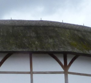 3 - Sprinklers on thatch of reconstructed Globe - just in case