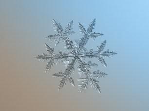 Snowflakes 7