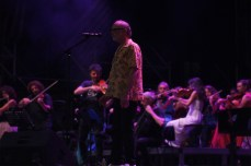DeGregori+Orchestra01