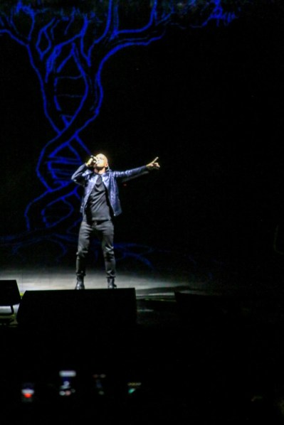Eros Ramazzotti Arena di Verona foto Francesca Fiorini (15) [1280x768]